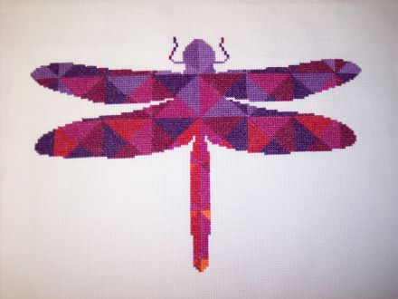 Kaleidoscope Dragonfly